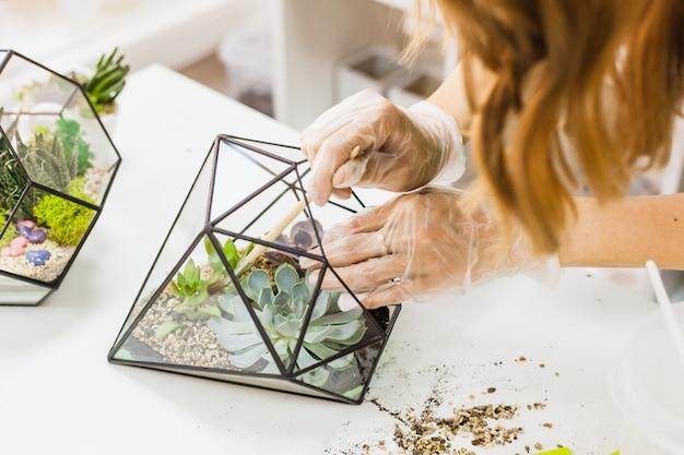 Glasvorm voor het kweken van planten en interieurdecoratie, zand, aarde, vetplanten, cactussen en planten, planten voor meisjesplanten