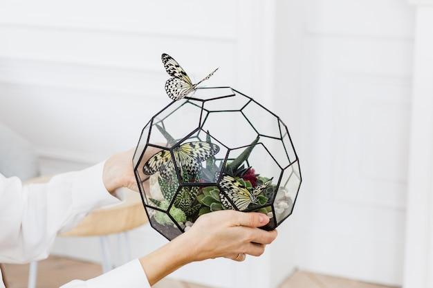 Glasvorm voor planten, stenen, zand, aarde en vlinders, interieurdecoratie, comfort creëren thuis, schoonheid, handgemaakte creatie