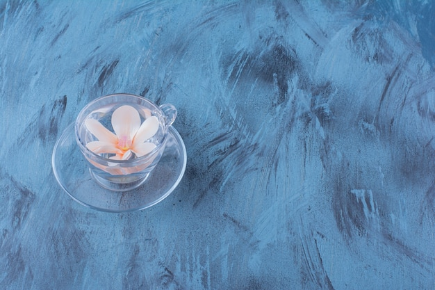 Glazen beker met water en roze bloem op blauw.