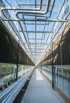Glazen dakinterieur met pijpen en muren in moderne kas, foto in lengte