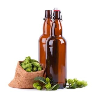 Glazen flessen voor kraft bier met verse groene tak van hop, geïsoleerd
