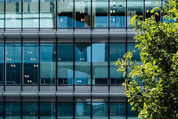 Glazen gevel van een kantoorgebouw met een boom buiten