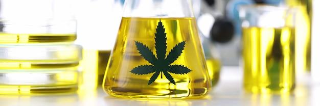 Glazen kolf met marihuana-olie staat op tafel in chemisch laboratorium close-up. productie van geneesmiddelen op basis van marihuanaconcept.