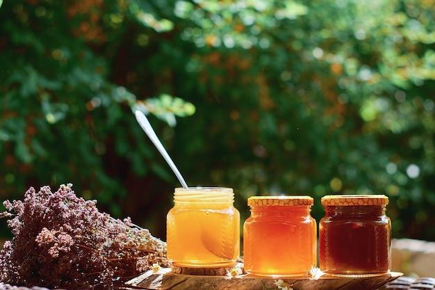 Glazen potten van natuurlijke honing op een achtergrond van groene bladeren