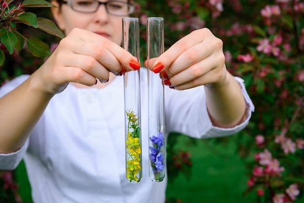 Glazen reageerbuizen met bloemstalen, close-up. vrouwelijke handen met kolven, onscherpe achtergrond.