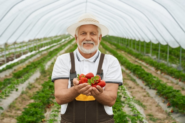 Glimlachende boer die rijpe aardbeien in handen houdt