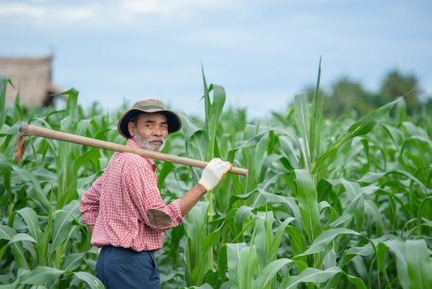 Glimlachende en gelukkige oudere man die een hogere landbouwer was die een schoffel op zijn schouders droeg