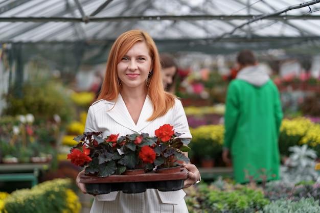 Glimlachende gelukkige bloemist in haar kwekerij staande met een ingemaakte rode geraniums in haar handen terwijl ze de tuinplanten in de kas neigt