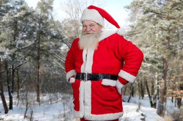 Glimlachende kerstman op de achtergrond van de natuur.