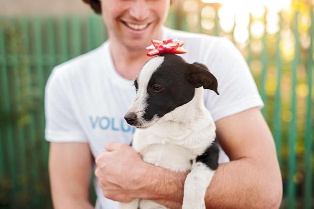Glimlachende mannelijke vrijwilliger die schattige kleine puppy met rode strik op hoofd in dierenasiel draagt