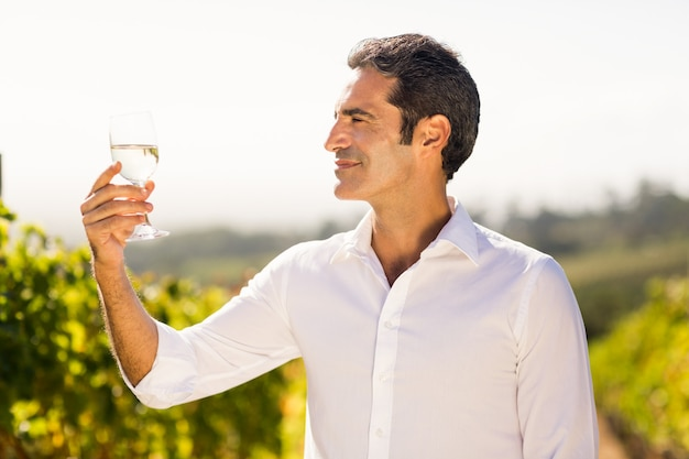Glimlachende mannelijke wijnhandelaar die een glas wijn bekijkt