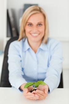 Glimlachende onderneemster die een kleine groene installatie houdt die camera onderzoekt