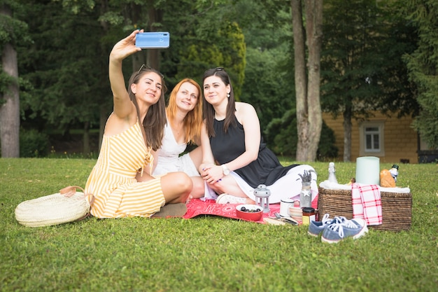 Glimlachende vrienden die selfie cellphone op picknick nemen