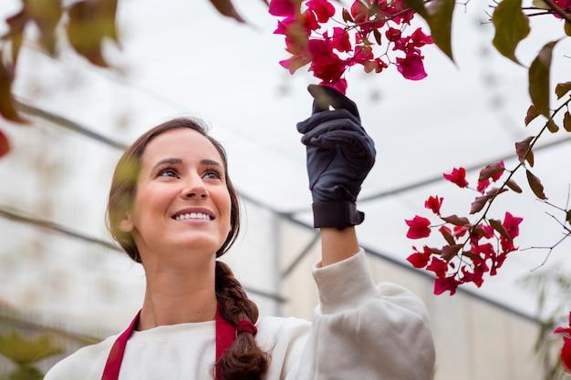 Glimlachende vrouw die het tuinieren kleren draagt en bloemen in serre bewondert