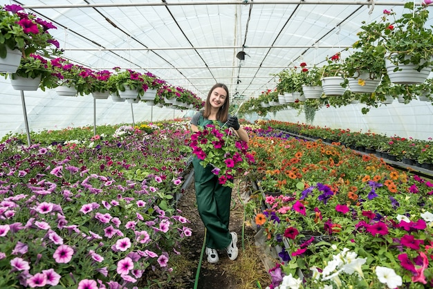 Glimlachende vrouwelijke tuinman die met bloemen in een serre werkt. lentetijd