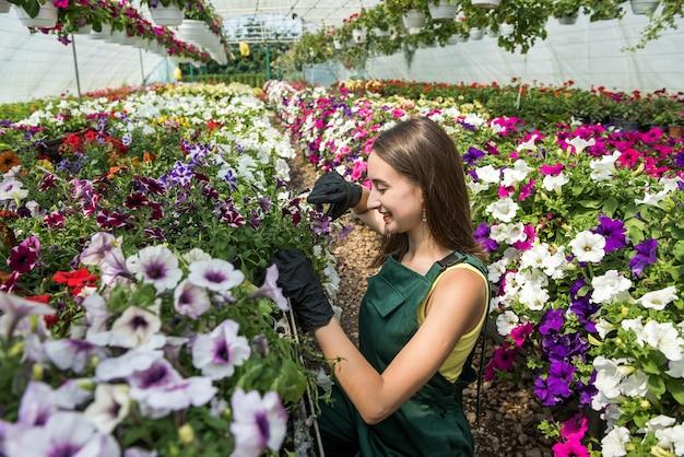 Glimlachende vrouwelijke tuinman die met bloemen in een serre werkt