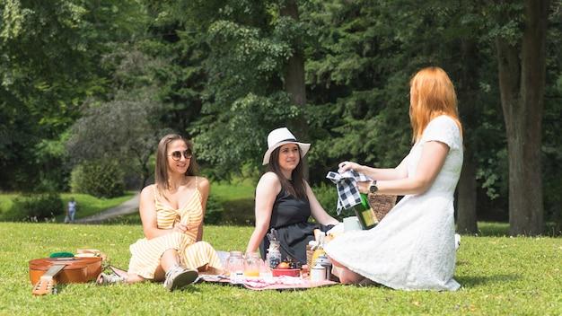 Glimlachende vrouwen die op picknick in het park genieten van