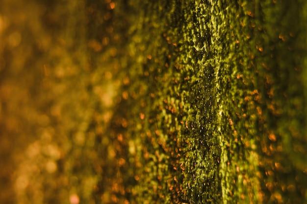 Glitter textuur achtergrond