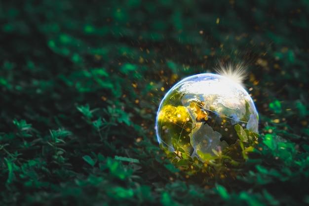 Globe op het gras in bos met glister - globe op het gras in bos met glister - milieu concept