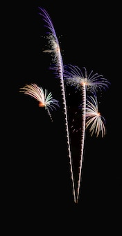 Gloeiend bloeiend bloemen barstend vuurwerklicht op zwarte hemel