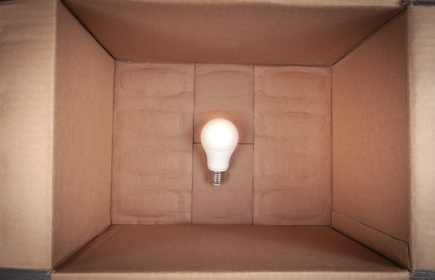Gloeilamp in de kartonnen doos.