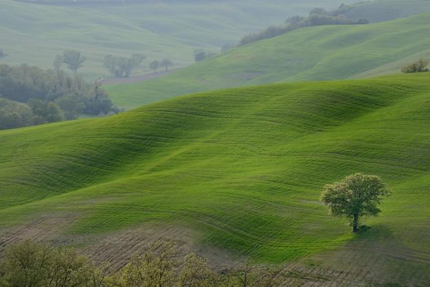 Glooiende heuvels platteland