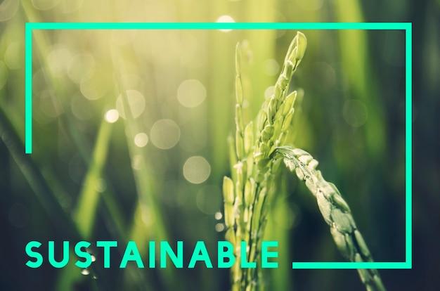 Go green verantwoordelijkheid duurzaam concept