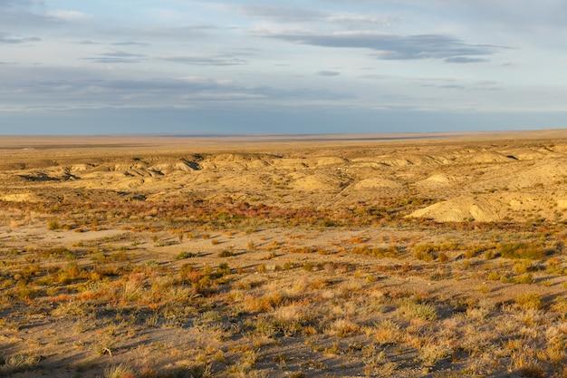 Gobi-woestijn mongolië