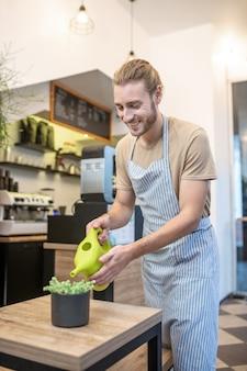 Goed gezind. vrolijke aantrekkelijke jonge bebaarde man in t-shirt en schort kamerplant drenken op tafel in café