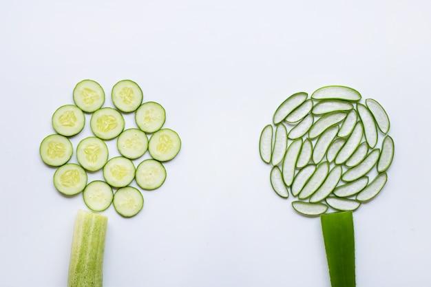 Goede huidverzorging en gezond met natuurlijke ingrediënten aloë vera en komkommers geïsoleerd op wit