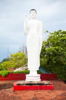 Gokanna rajamaha viharaya, trincomalee
