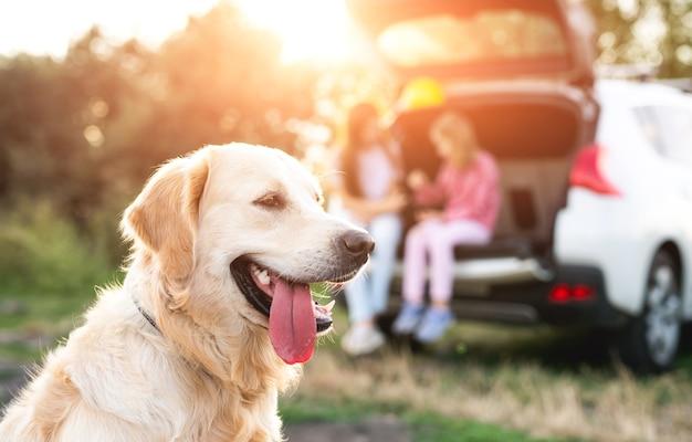 Golden retriever-hond op voorgrond en meisjes in open autokoffer die bij zonsondergang op aard rusten