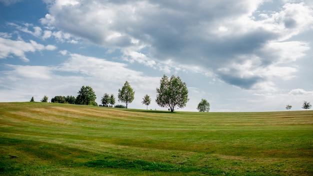 Golf veld met bomen en gazon in het tsjechisch