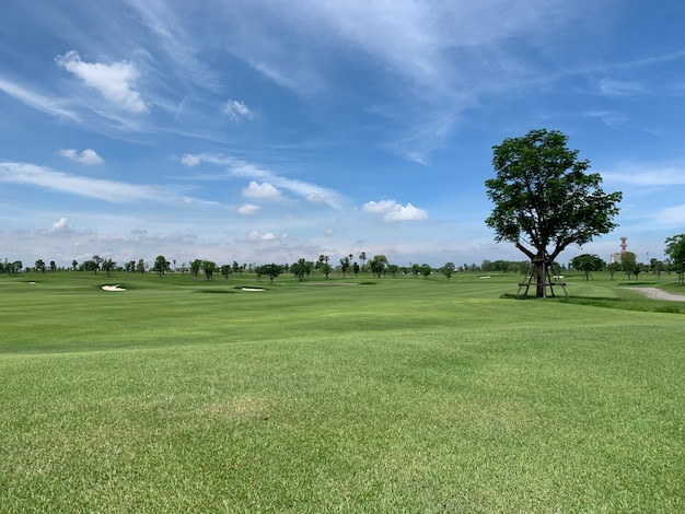 Golfbaan met grote boom en blauwe lucht met wolken