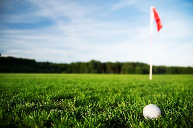 Golfbal in een gras veld