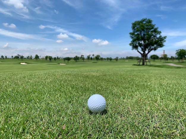 Golfbal op de golfbaan met grote boom en blauwe lucht met wolken