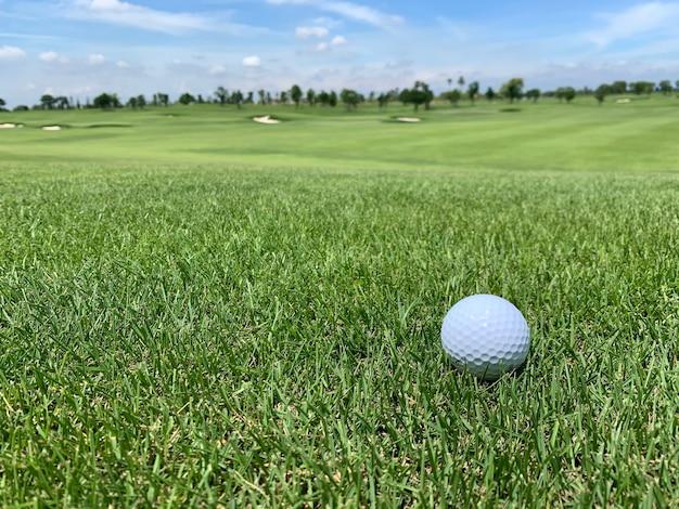 Golfbal op de groene close-up