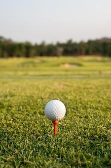 Golfbal op een t-stuk tegen de golfcursus. sluit omhoog bij golfbal en t-stuk