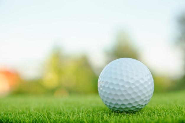 Golfbal op groen gras klaar om bij golfcursus te spelen.