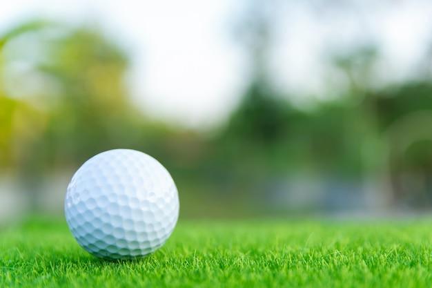 Golfbal op groen gras klaar om bij golfcursus te spelen