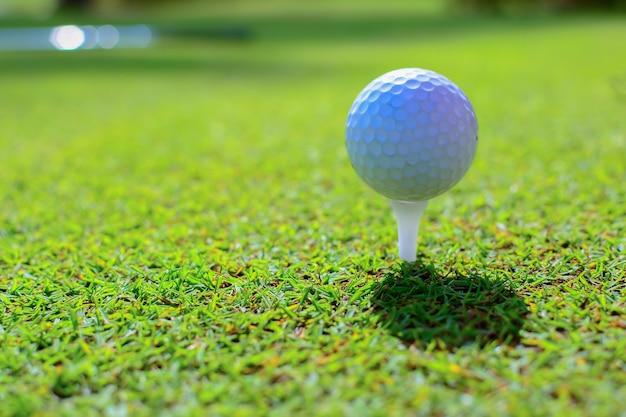 Golfbal op het groene gras.