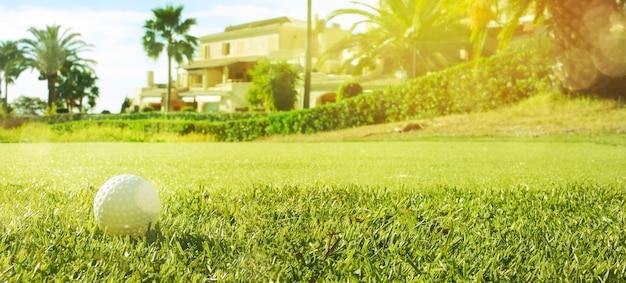 Golfclub en golfbal in gras in zonsopgang.