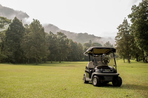 Golfkar geparkeerd. bali. indonesië