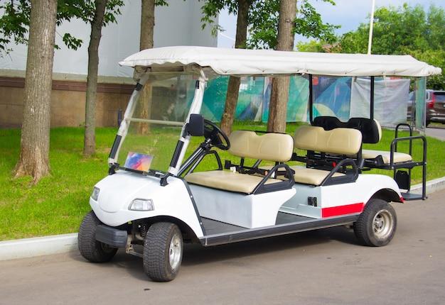 Golfkar met meerdere zitplaatsen. elektrische auto voor excursies in het park. vervoer van mensen.