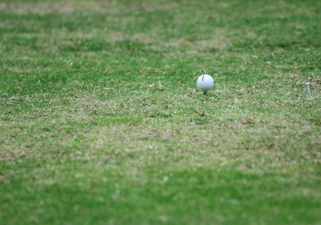 Golfuitrusting, golfbal met tee op cursus