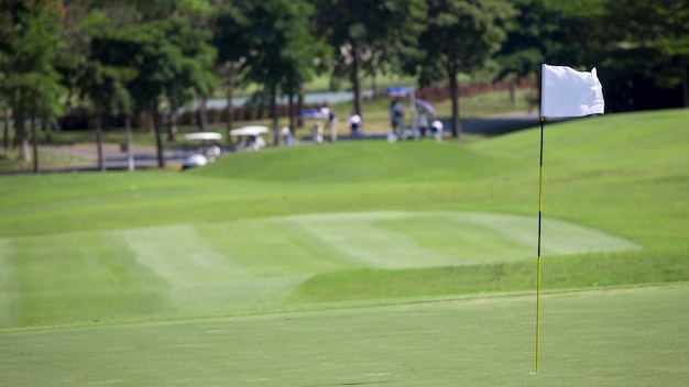 Golfvlag op het groene gras