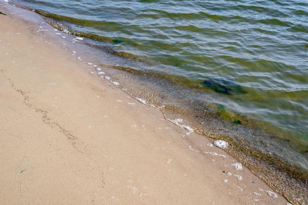 Golven aan de oever van een zandstrand met geel zand op een zonnige dag turquoise water en groene algen