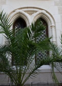 Gotische houten ramen buiten het kasteel met palmboom