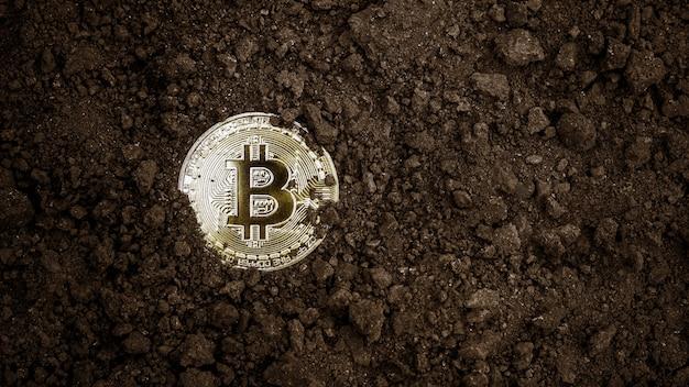Gouden bitcoins winnen