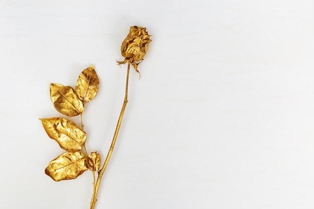 Gouden bloem roos ontwerpelementen op lichte achtergrond met kopie ruimte.
